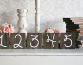 Rustic Table Numbers Barn Wood Wedding Decor Farm Country Wedding (item P10433)