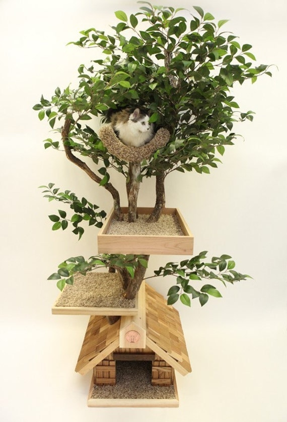 adult medium cat tree house