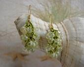 Chainmail Peridot Green Seed Bead Earrings