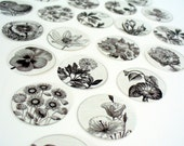 Stickers Envelope Seals Flowers Black and White Drawings SES10 - set of 24