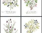 4 PETITS FRUITS - FRENCH -Culinary Art- Collection