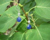 Cobalt and Rainbows Sterling Silver Earrings
