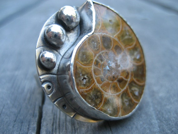 alainn ammonite shell ring