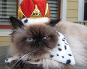 Cat Crown hat, The Crown Jewels, and reversible dalmatian leopard print collar
