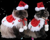 Santa Costume holiday cape and Santa hat for cats and dogs