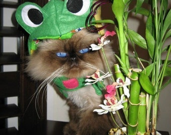 Infrognito frog costume for cat or dog