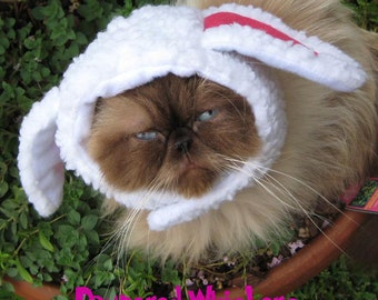 The Sheepish One costume for cats and dogs