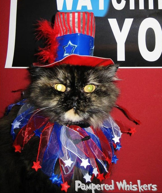 Uncle Sam pet hat and collar