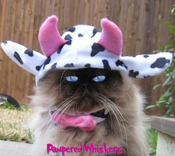 Mad Cow costume cat hat