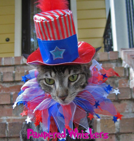 Uncle Sam Cat Top Hat And Party Collar For By Pamperedwhiskers