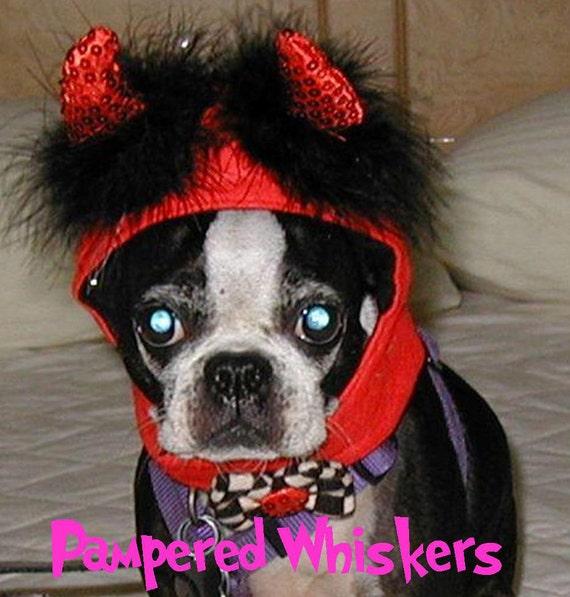 Little Devil costume hat for cat or dog