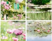 France Photo Set - Monet's Garden, Four French Country Photos of Giverny, Roses, Waterlilies, Poppies