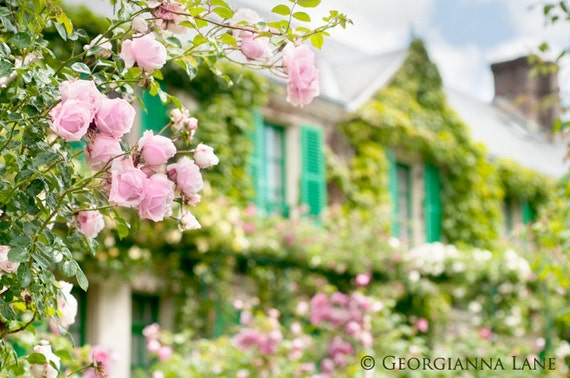 France Photo - Monet's House, Giverny, Roses and Teal Shutters, Wall Decor, Romantic Floral Fine Art Travel Photograph