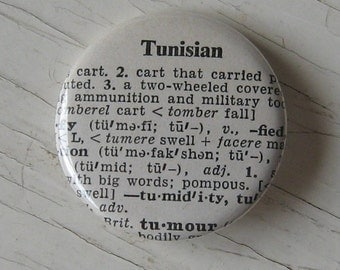 Tunisian Vintage Dictionary Pin