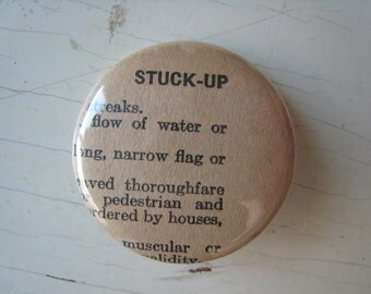 Stuck Up Vintage Dictionary Pin
