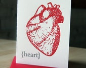 SALE - Letterpress Love/Valentine's Day Card/Anniversary card - Anatomical Heart