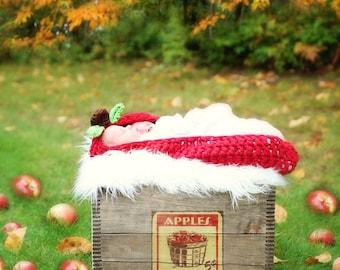 Little Apple Seed Cocoon Crochet Pattern pdf 123B great for photo props