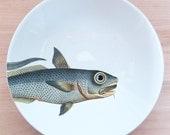 """fishy fish Pasta Bowl- """"barbichette"""""""
