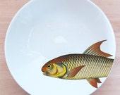"""fishy fish Pasta Bowl- """"coup de soleil"""""""
