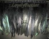 Coque feather fringe of black irridescent 10 yards trim