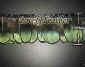 Lady Amherst Pheasant feather fringe of green 10 yards trim
