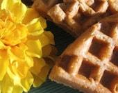 Gluten Free Authentic SAN FRANCISCO Sourdough Bread Organic Starter w/ Recipes, Guide