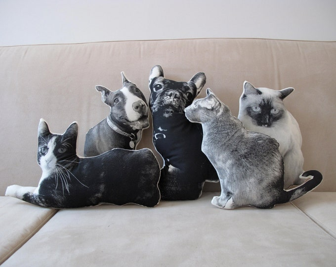 Featured listing image: Custom Silkscreen Pet Pillow