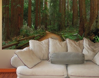 Wall Mural, Muir Woods, 48x100 inches