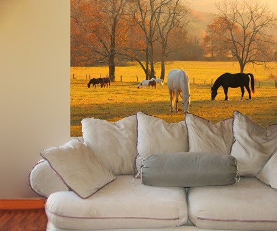 Photo Wall Mural, self adhesive, Cades Cove horses, TN, 48x72 inches - free US shipping