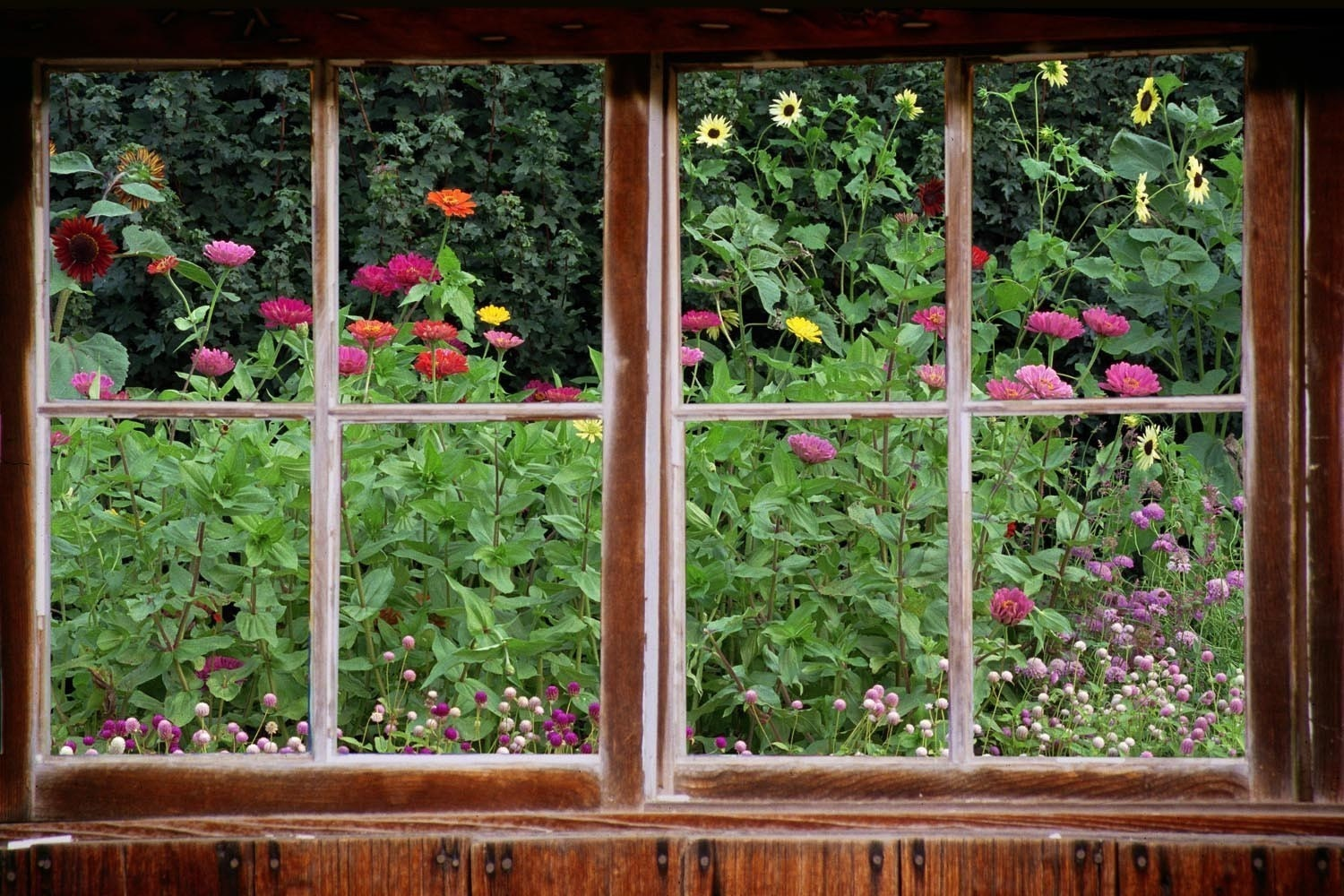 Wall mural window self adhesive garden window view 3 sizes for Window wall
