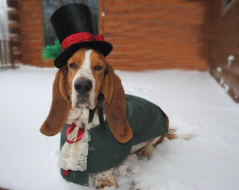 Christmas Caroler Dog Pet Costume outfit by MattiOnline on Etsy CUSTOM small to medium size