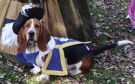 RESERVED Three 3 Musketeer Dog Pet Costume outfit by MattiOnline on Etsy CUSTOM two outfits