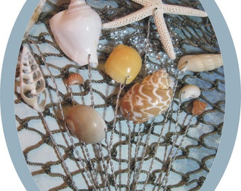 Natural Shell Stems for Beach Cottage Decor on Etsy