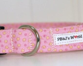 PBJ World Custom Collar...Summer Vacation