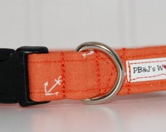 PBJ World Custom Collar...Sunset Cruise