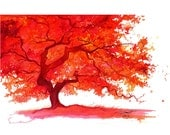 Watercolor Japanese Maple Tree Painting, Jessica Durrant - The Lone Japanese Maple print