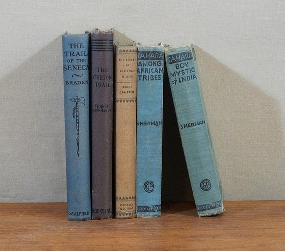 Vintage Books, Adventure and Mystery, Instant Collection of Five