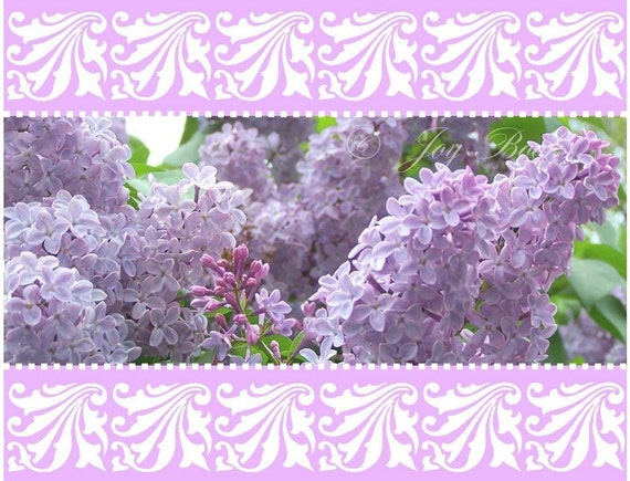 LILACS AND LACE Note Card