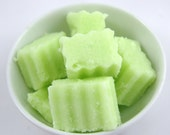 Refreshing Lemon Lime Solid Sugar Scrub