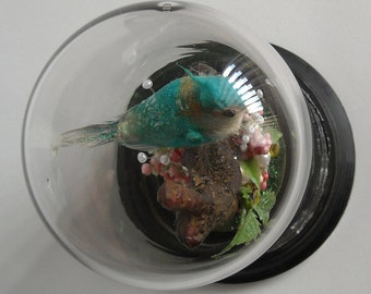 Vintage Upcycled Bird Terrarium with Glitter, Pearls and Rhinestones