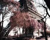 Paris in the Spring - Fine Art Photography Print - 8x10 - Eiffel Tower - France - Flowers - Trees - Romantic - Home Decor