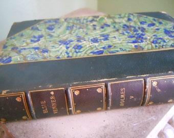 Elsie Venner Book by Oliver Wendall Holmes 1891