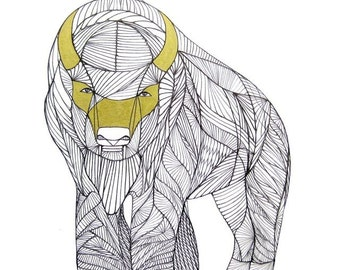 BUFFALO LINE DRAWING- Art by Thailan When