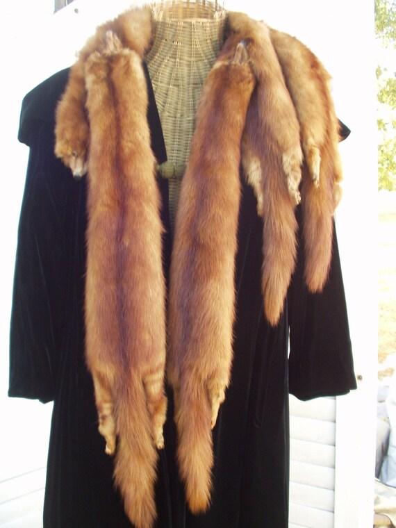 Stone Marten Fur Collar - 1940's