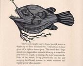 Bearded Angler