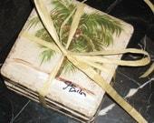 Hand-Painted Palm Tree Tile Coaster Set ( 6 tiles)