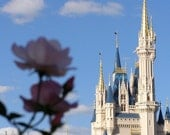 Disney Castle - A Rosey Perspective