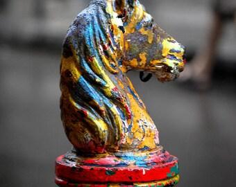 Photograph Print - Colorful Horsehead Horse Tie-post, New Orleans - nola jackson square big easy facade mardi gras