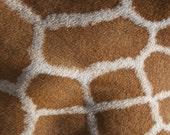 Africa Texture Giraffe