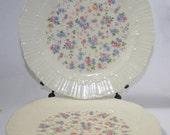 Dishes Petite Floral Vintage Coronet Pair, Shabby Chic, Shabby Decor, Pink Petite Roses Plates